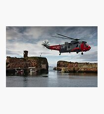 Hovering over Dunbar Harbour Photographic Print