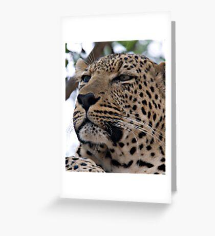 Tumbela Greeting Card
