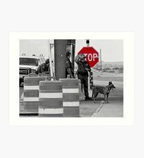 Border Check Art Print