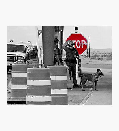 Border Check Photographic Print