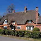Redbrick Thatch by hootonles