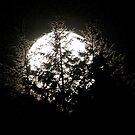 Moon Zap by Kenneth Haley