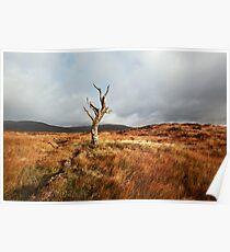 Glencoe landscape Poster