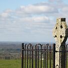 Cross of Tara by Elspeth  McClanahan