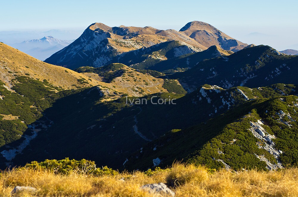 A view to the top by Ivan Coric