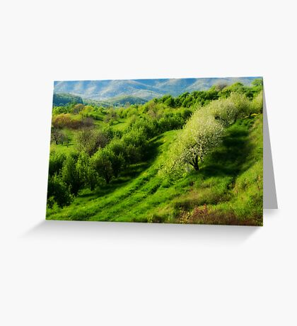 Blue Ridge Mountains Apple Orchard Greeting Card