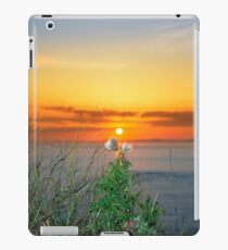 tall thistles on the wild atlantic way at sunset iPad Case/Skin