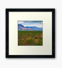 The Foothills Framed Print
