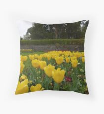 Tulips at Muckross House Throw Pillow