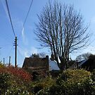 A Thatched Cottage on a Sunny Spring Day by BlueMoonRose