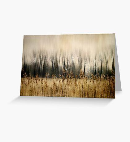 Marsh Edge Greeting Card