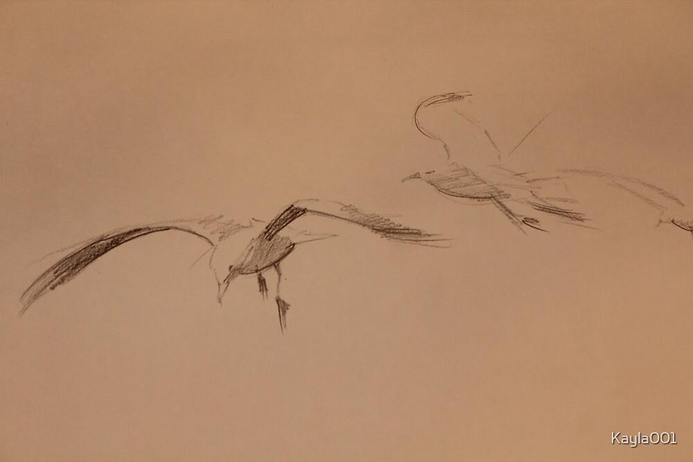 Gulls in Flight by Kayla001
