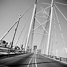 The Mandela Bridge  by David  Preston