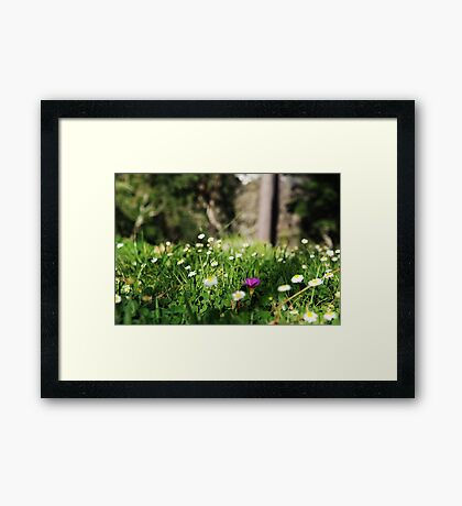 The Standout Framed Print