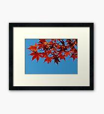 Red vs. Blue Framed Print