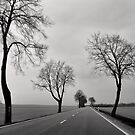 Road Through Windy Fields by Ari Salmela