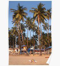 Palm Lined Beach Palolem Poster