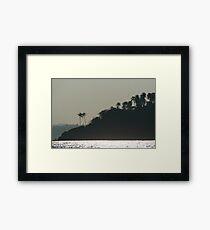 Palm Trees on Monkey Island Framed Print