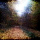 Pieces of Autumn #2 by Benedikt Amrhein