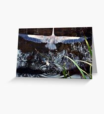 Great Blue Heron Taking Off - Beauty In Motion Greeting Card