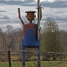 Scarecrow Tin Man by nikspix