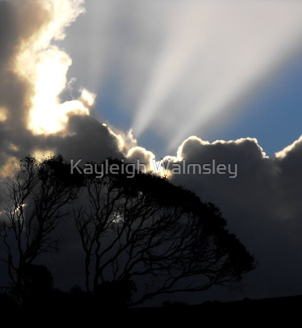 Sun Beams by Kayleigh Walmsley