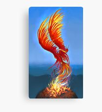 Colours of Fire Canvas Print