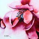 Anemonie by Kay Clark
