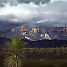 Storms Over Maderas Del Carmen by © CK Caldwell IPA