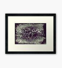 Surrealistic Tree Framed Print