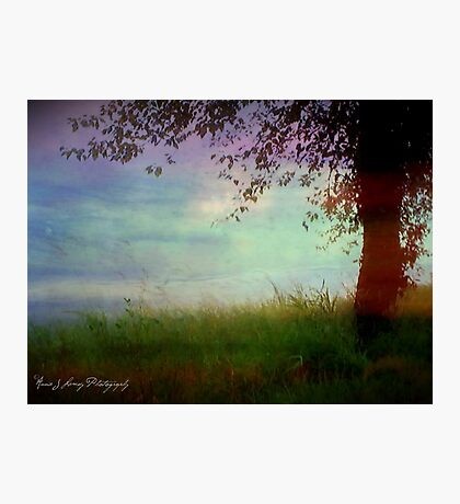 Whispering Tree Photographic Print