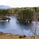 Tarn Hows by mikebov