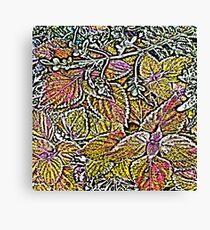 Leaves #7d Canvas Print