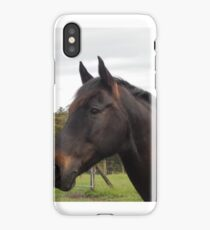 Andalusian  iPhone Case