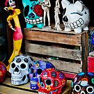 Sayulita Color by Lynnette Peizer