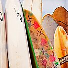Surfboards by Lynnette Peizer