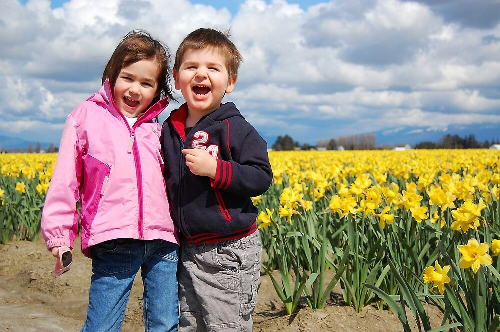 Smiles in the Daffodils by Tracy Friesen