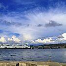 Edmonds Ferry, Washington State by Barb White