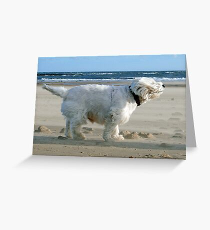 The Wind Will Blow ! Greeting Card