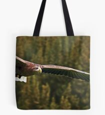 White Tailed Sea Eagle Soaring Tote Bag