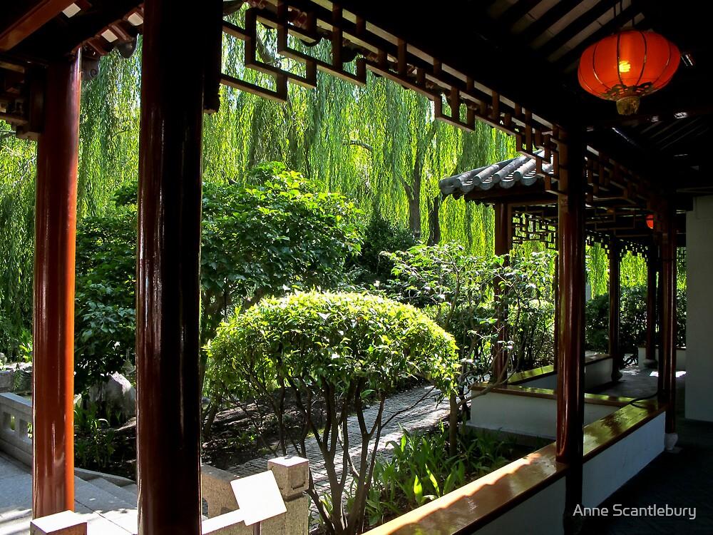 Chinese gardens by Anne Scantlebury