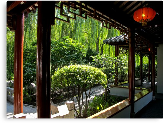 Chinese gardens by Anne Scantlebury