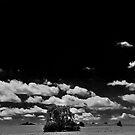 Nebrsky 3 by Tim Wright