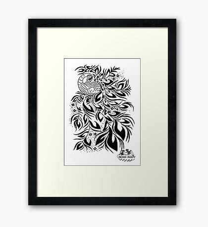 Peacock #4 Framed Print