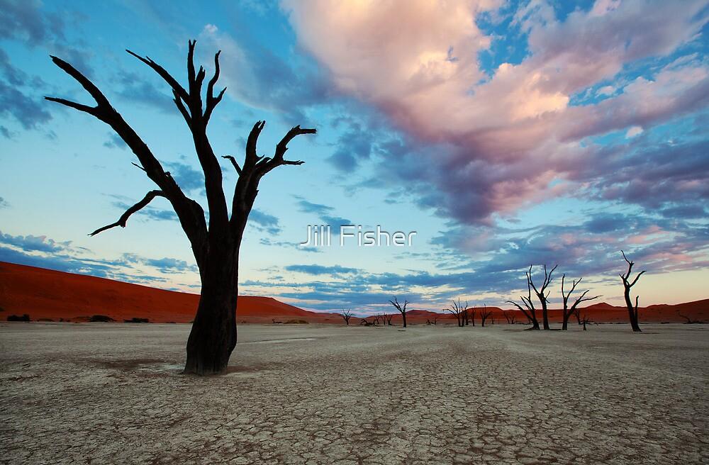 Dead Vlei at Sunrise by Jill Fisher