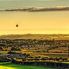Hot Air Balloons at Twilight by Tom Gomez