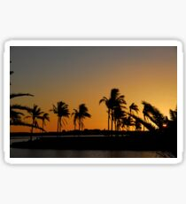 Sunset and palm trees. Sticker