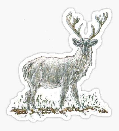 Albino Stag Tee Shirt Sticker