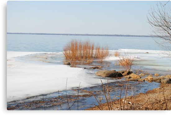 Spring Thaw by Sandra Fortier