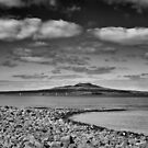 Rangitoto Curves by meredithnz